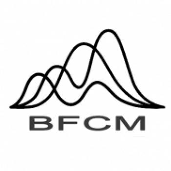 BFCM Invest